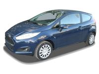 Ford Fiesta 1,25 Trend mit Winterpaket (EU)